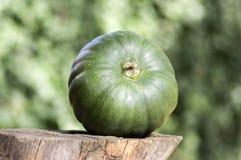 Uma abóbora no coto de madeira Imagem de Stock Royalty Free