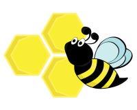Uma abelha com um favo de mel Fotos de Stock