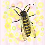 Uma abelha e uma flor A dança ilustração do vetor