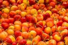 Uma abundância de cerejas fotos de stock