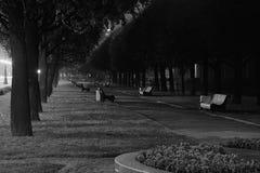 Uma aléia escura Fotografia de Stock Royalty Free