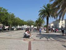 Uma alameda pedestre em Aveiro foto de stock royalty free
