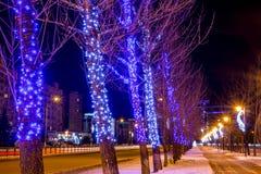 Uma aleia colorida com as árvores decoradas com festões imagens de stock royalty free