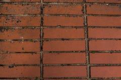 Uma amostra de alvenaria da argila, uma forma retangular, cor da terracota, usada ao colocar a estrada foto de stock royalty free