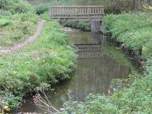 Uma angra pequena e uma ponte de madeira pequena fotos de stock royalty free