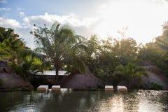 Uma associação em um recurso luxuoso com as palmeiras em Cancun, México imagens de stock