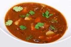Uma bacia da sopa vegetal da carne Fotografia de Stock