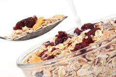 Uma bacia de cereal de pequeno almoço americano e de fruta seca Foto de Stock Royalty Free