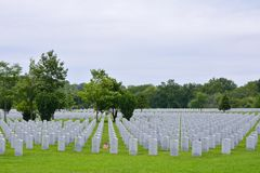 Uma bandeira americana pequena honra o gravesite de veteranos de uma segunda guerra mundial Imagens de Stock Royalty Free