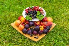 Uma bandeja de frutos frescos e de bagas Fotografia de Stock