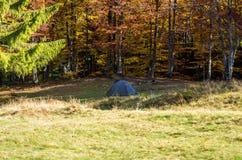 Uma barraca do turista na floresta do outono da floresta imagens de stock