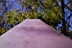 Uma barreira grossa do metal com uma vista das folhas Foto de Stock