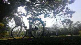 Uma bicicleta no parque Fotos de Stock