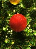 Uma bola de cristal vermelha bonita Imagens de Stock Royalty Free