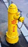 Uma bomba de água japonesa Fotografia de Stock