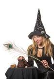 Uma bruxa Fotos de Stock