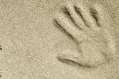 Uma cópia da palma na areia seca Fotografia de Stock