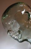 Uma cabeça desobstruída Imagem de Stock Royalty Free