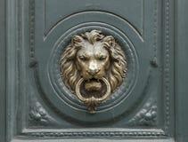 Uma cabeça do ` s do leão Fotografia de Stock Royalty Free