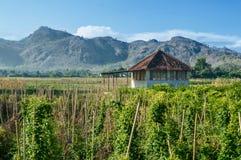 Uma cabine no meio de uma exploração agrícola com Mountain View bonitos imagens de stock royalty free