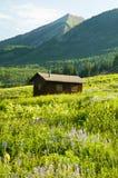 Uma cabine pequena em um campo dos wildflowers Foto de Stock Royalty Free
