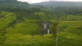 Uma cachoeira cingalesa Foto de Stock