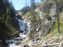 Uma cachoeira de conexão em cascata no parque nacional de Yellowstone fotografia de stock royalty free