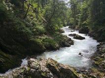 Uma cachoeira em um rio de Vintgard fotos de stock royalty free