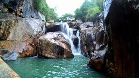 Uma cachoeira entre a selva video estoque
