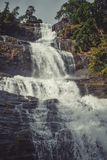 Uma cachoeira leitosa Fotografia de Stock