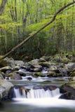 Uma cachoeira no parque nacional da montanha fumarento Imagem de Stock