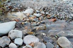 Uma cachoeira pequena Imagem de Stock