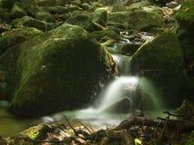 Uma cachoeira pequena fotografia de stock royalty free