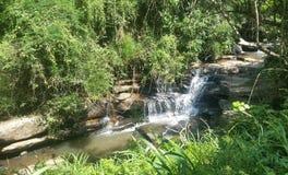 Uma cachoeira pequena agradável Imagens de Stock