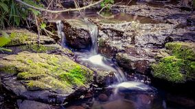 Uma cachoeira pequena imagem de stock royalty free