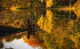 Uma cadeira do ` s do pescador na lagoa do outono Imagem de Stock
