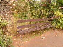 Uma cadeira no jardim Imagem de Stock