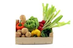 Uma caixa com vegetais diferentes Imagem de Stock Royalty Free