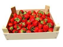 Uma caixa de morangos Imagem de Stock Royalty Free