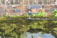 Uma calha e uma torneira do jardim Fotografia de Stock