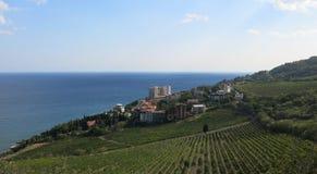 Uma caminhada agradável através da jarda do vinho pelo mar Foto de Stock Royalty Free