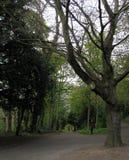 Uma caminhada através de Durham imagens de stock