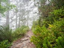 Uma caminhada fascinante e dif?cil ao escalar o Monte Olimpo em Gr?cia foto de stock