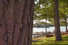 Uma caminhada na ilha do coração fotografia de stock royalty free