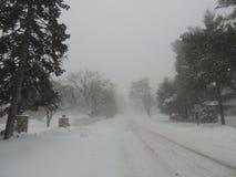 Uma caminhada no blizzard - em janeiro de 2018 fotos de stock