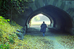 Uma caminhada no parque Imagem de Stock