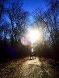 Uma caminhada no parque Fotos de Stock Royalty Free