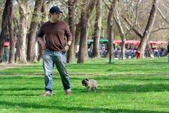 Uma caminhada no parque Imagens de Stock Royalty Free