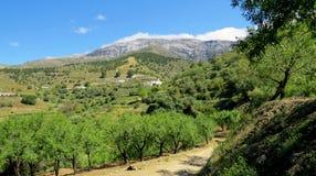 Uma caminhada nos montes espanhóis Imagem de Stock Royalty Free