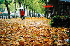 Uma caminhada sob o guarda-chuva #2 Fotos de Stock